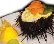 cambodia-sea-urchin